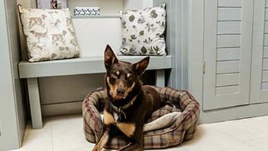 Boot Room/Dog Room